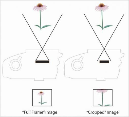 DSLR - Illustration - Sensor Cropping