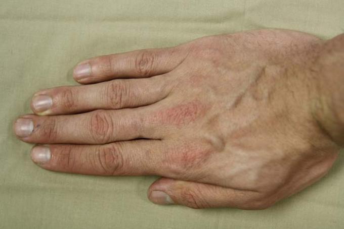 DSLR - Illustration - Hand Beige Background