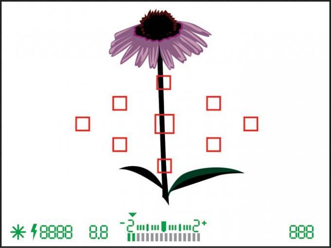 DSLR - Illustration - Internal Light Meter Under Exposed