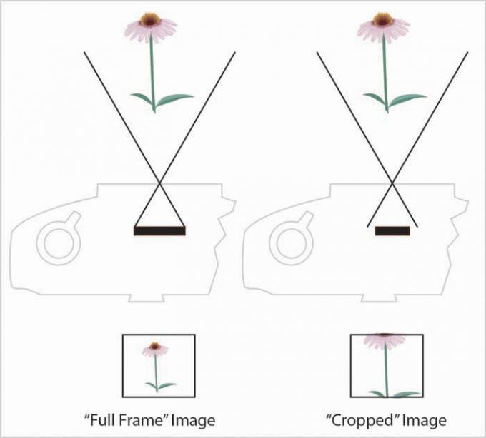 DSLR - Illustration - Sensor Cropping